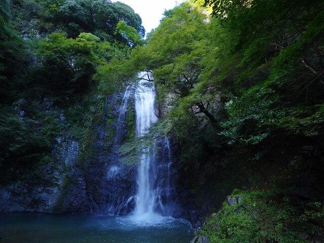 箕面 の 滝 ランチ